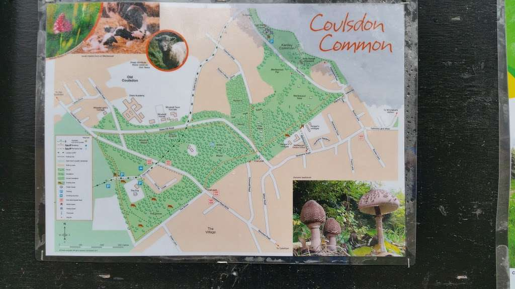 Merlewood Estate Office - park  | Photo 2 of 2 | Address: Ninehams Road, Caterham CR3 5LN, UK | Phone: 01372 279083