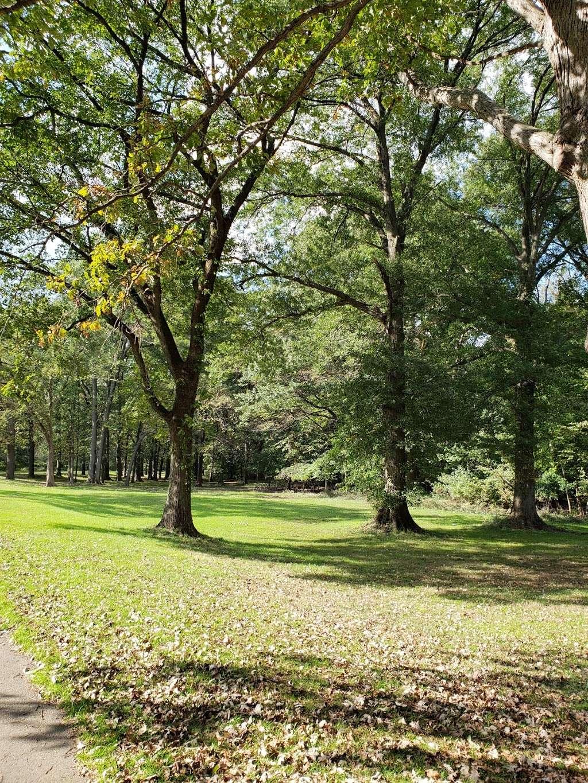 Saddle River Bike Path Parking 3 - park  | Photo 2 of 10 | Address: 760 Saddle River Rd, Saddle Brook, NJ 07663, USA