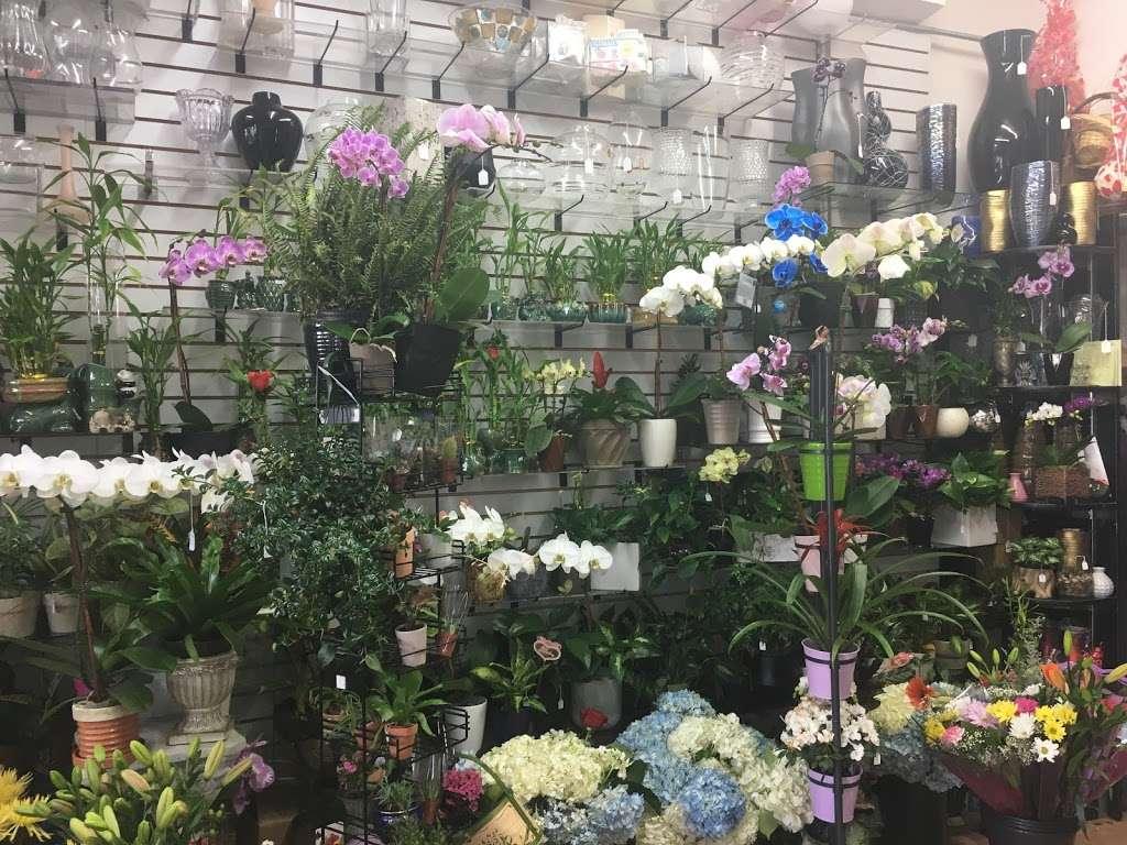 Yesenias Flowers - florist  | Photo 3 of 10 | Address: 1537 Castle Hill Ave, Bronx, NY 10462, USA | Phone: (347) 657-0022