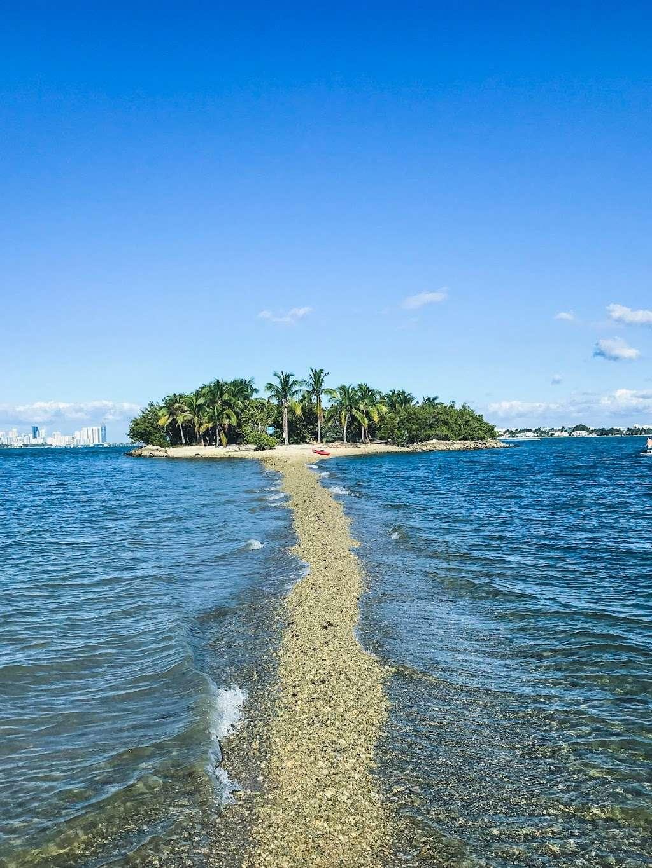 Edward K. Buckley Island - park  | Photo 3 of 10 | Address: Miami Beach, FL 33141, USA