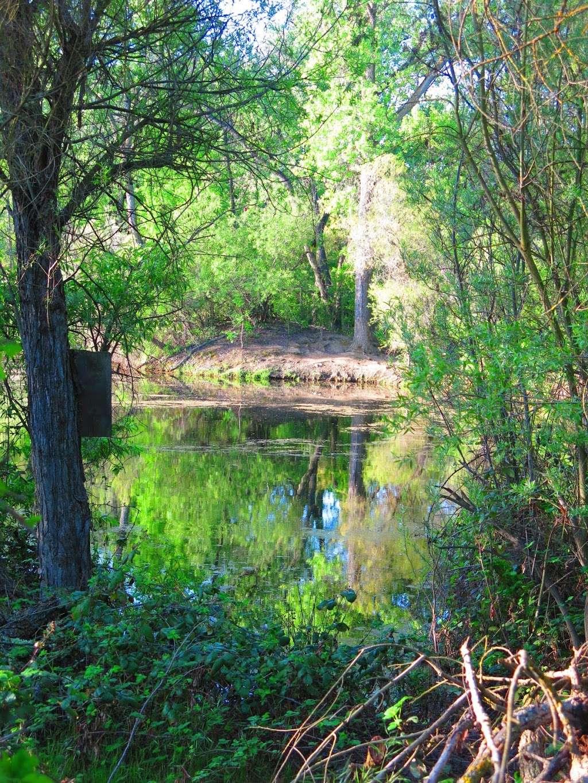 Boris Lake Bench - park  | Photo 1 of 7 | Address: Pleasanton, CA 94566, USA