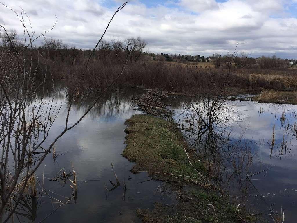 Willow Springs Beaver Ponds - museum  | Photo 2 of 3 | Address: Centennial, CO 80112, USA