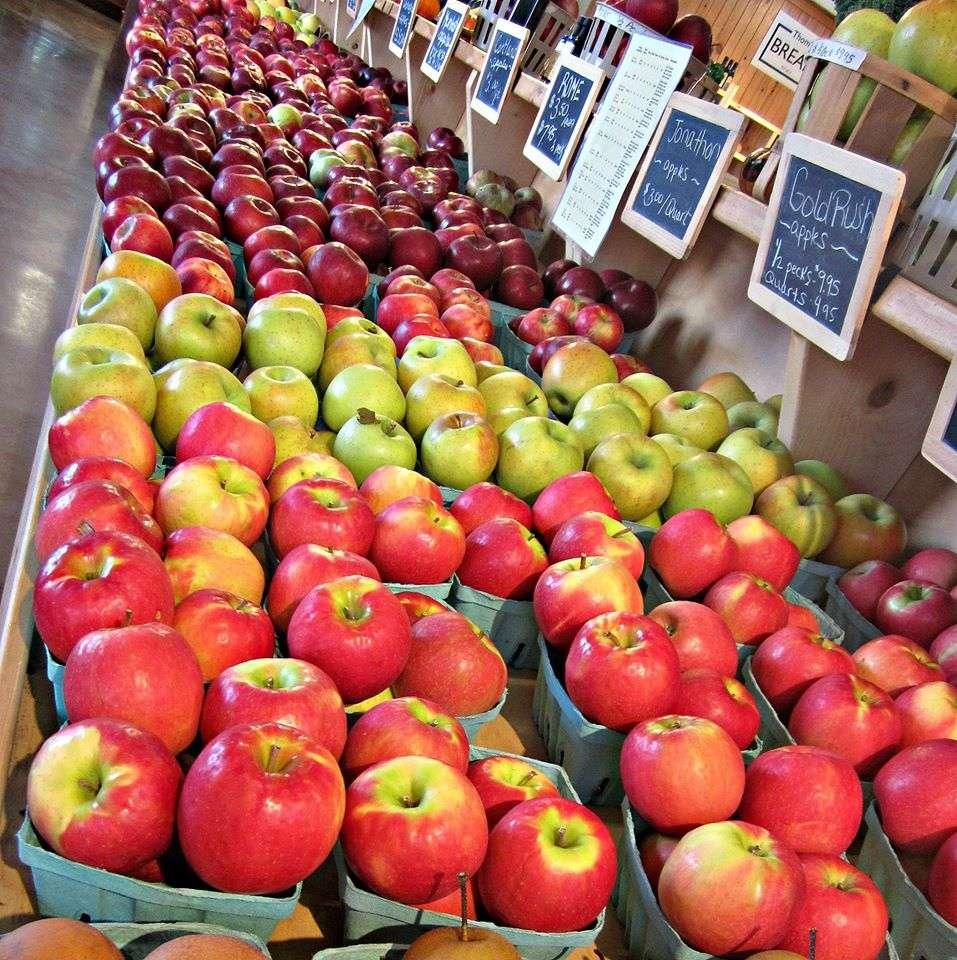 Harvest Lane Farm - bakery  | Photo 3 of 10 | Address: 851 E Oregon Rd, Lititz, PA 17543, USA | Phone: (717) 560-6219