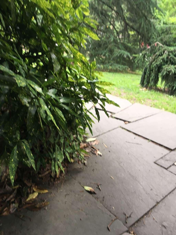 Fragrance Garden Alice Recknagel Ireys - park  | Photo 9 of 10 | Address: 998 Mary Pinkett Avenue, Brooklyn, NY 11225, USA | Phone: (718) 623-7200