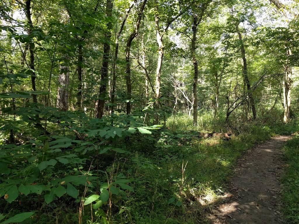 Joe Creason Park - park  | Photo 7 of 8 | Address: 1297 Trevilian Way, Louisville, KY 40213, USA | Phone: (502) 574-7275