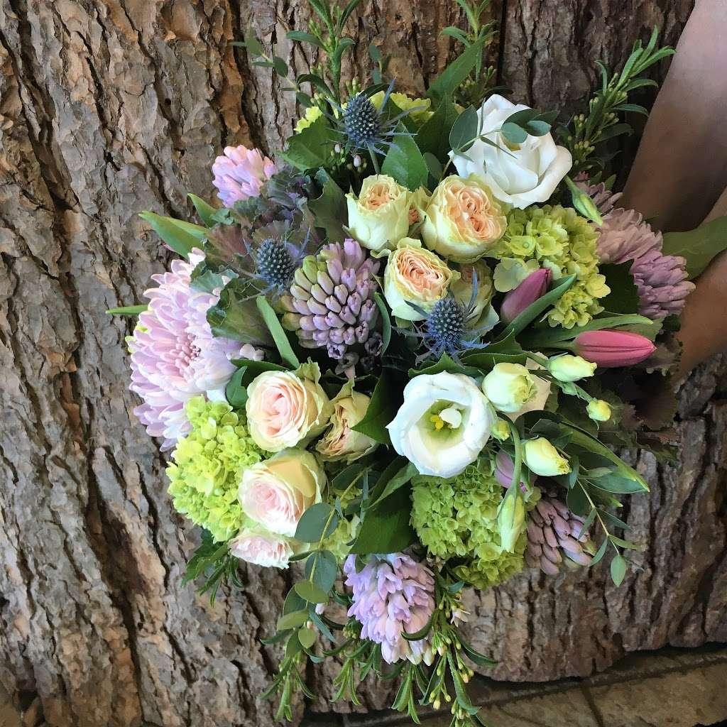 Noahs Ark Florist - florist  | Photo 3 of 10 | Address: 200 Hudson Street Harborside Financial Center, Jersey City, NJ 07311, USA | Phone: (201) 521-1031