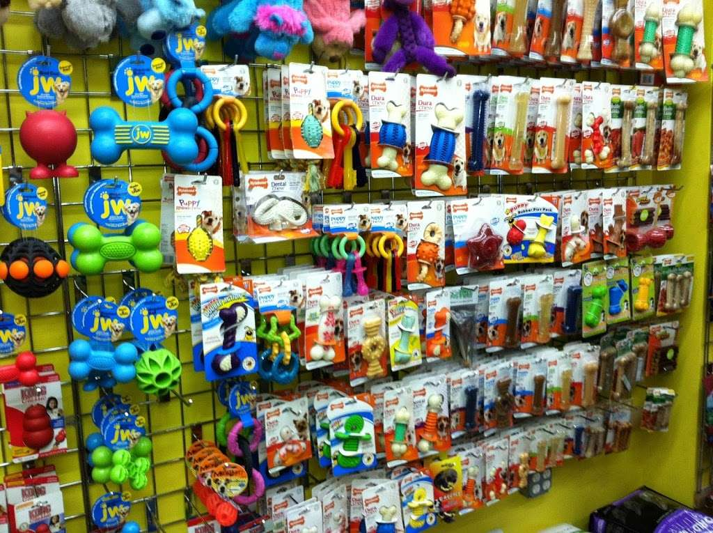 Furry Fiends - store    Photo 4 of 10   Address: 630 W 207th St, New York, NY 10034, USA   Phone: (212) 942-0222