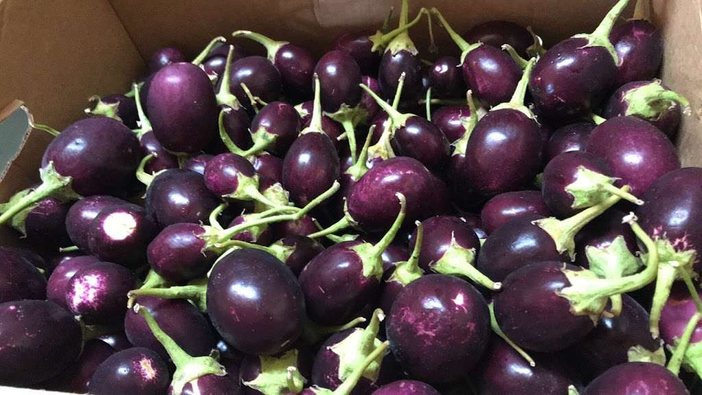 Haymana Produce Market - store  | Photo 8 of 10 | Address: 11312 Reisterstown Rd, Owings Mills, MD 21117, USA | Phone: (410) 998-3100