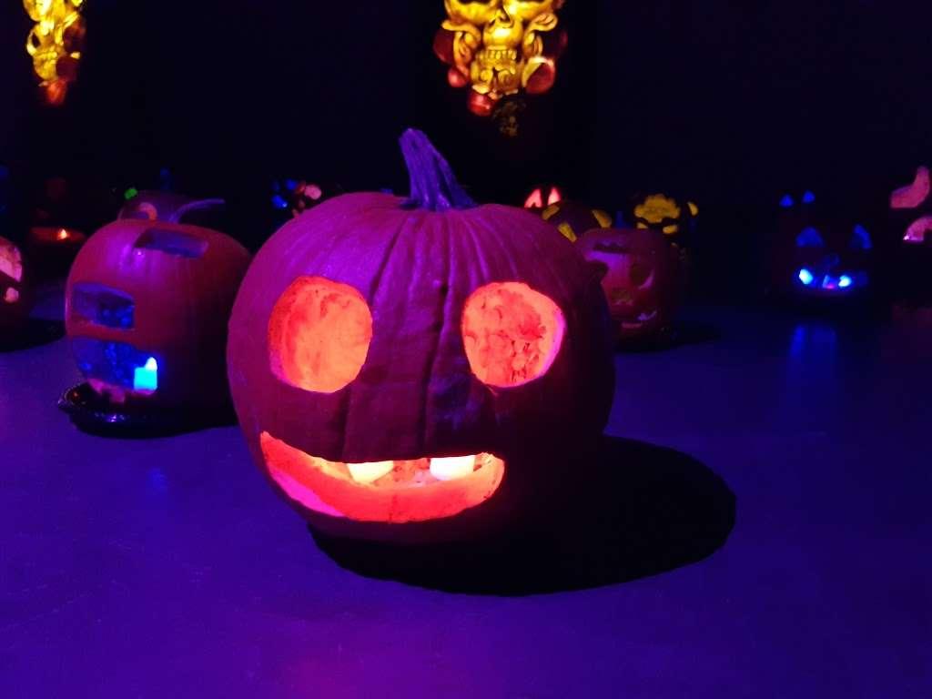 The Rise Of Jack O Lanterns - museum  | Photo 4 of 10 | Address: 555 Park Plaza Dr, Secaucus, NJ 07094, USA | Phone: (516) 252-3392