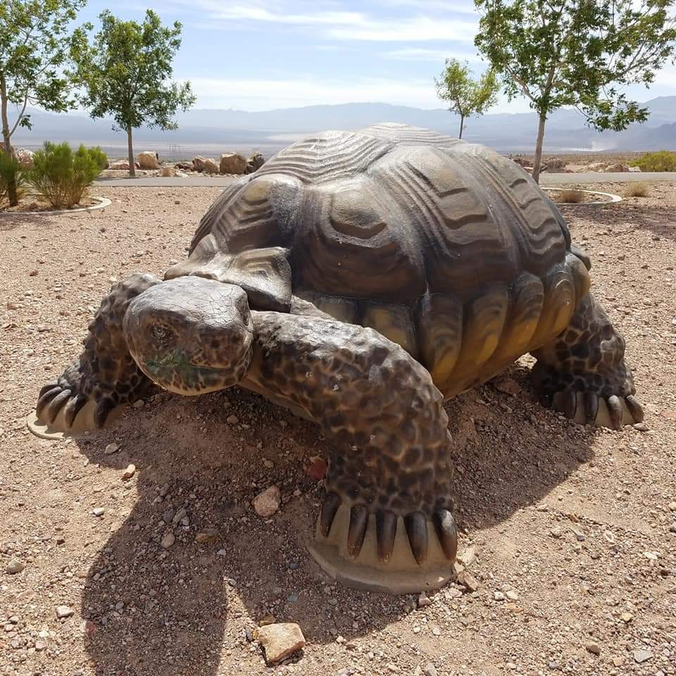 Nature Discovery Trail and Rock Garden - park  | Photo 3 of 10 | Address: Boulder City, NV 89005, USA