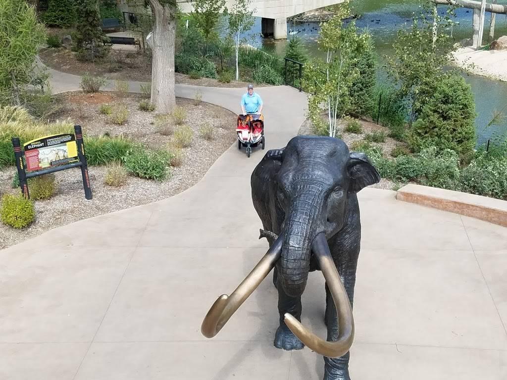 Elephant Amphitheater - zoo    Photo 2 of 10   Address: 3901-, 3999 S River Dr, Omaha, NE 68108, USA   Phone: (402) 733-8400