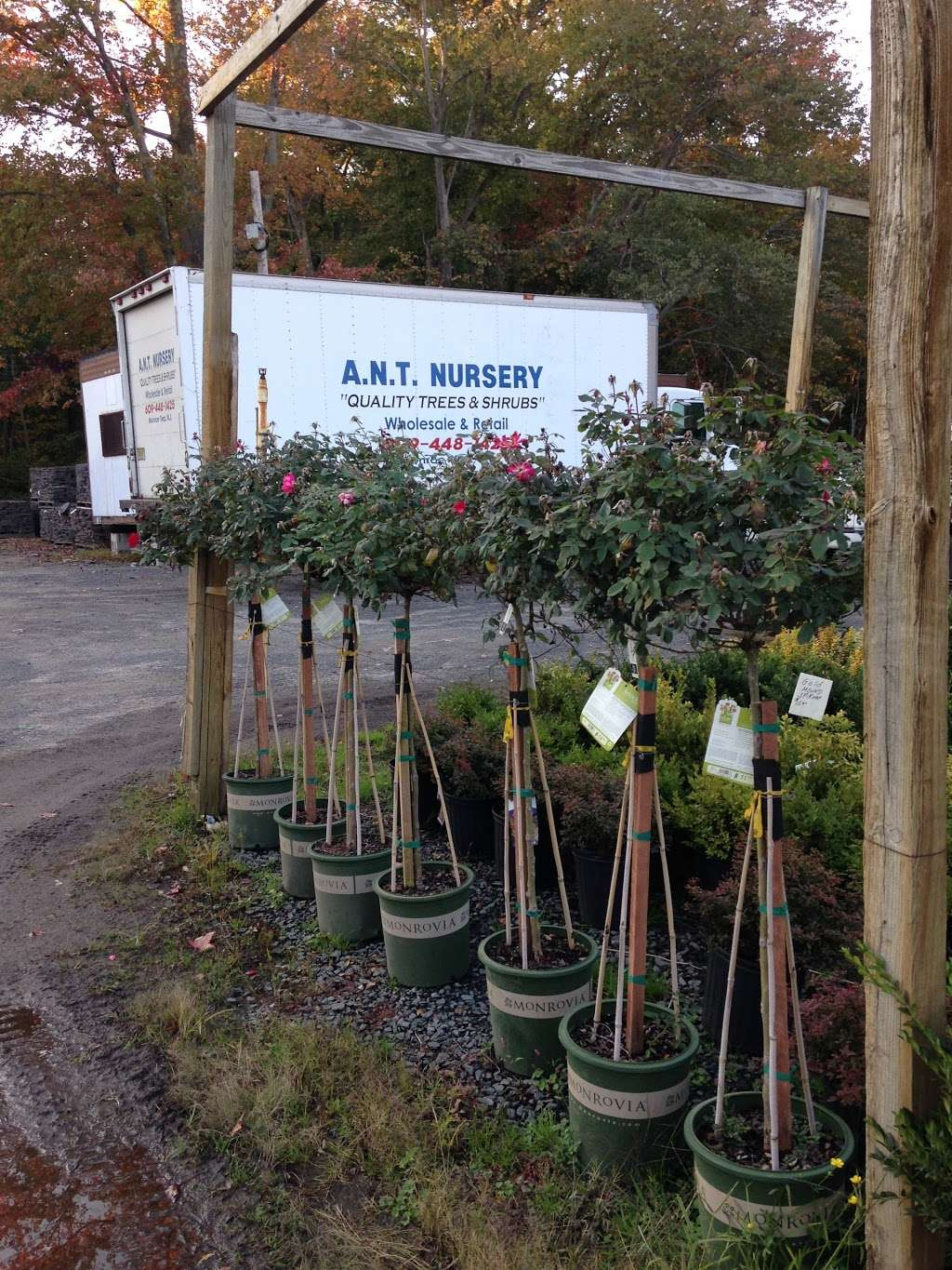 A N T Nursery Inc 1439 Perrineville