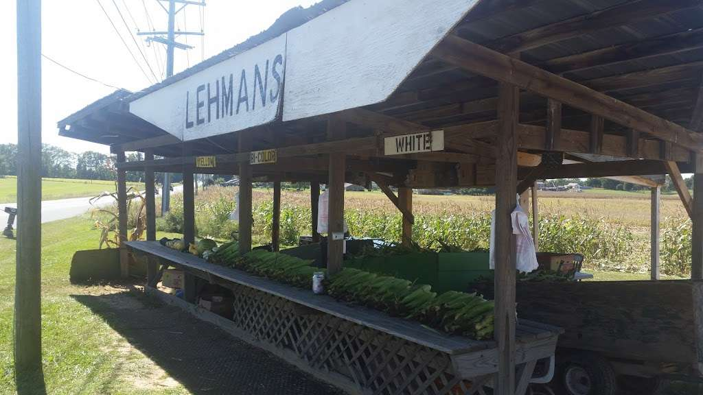 Lehmans Sweet Corn and Produce - store  | Photo 4 of 5 | Address: 9742 Downsville Pike, Hagerstown, MD 21740, USA | Phone: (301) 582-1130