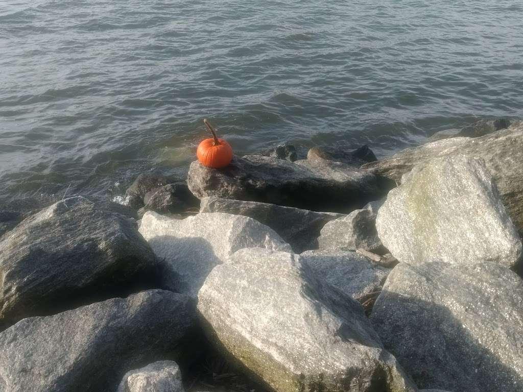 Riverside Park South - park  | Photo 4 of 10 | Address: Riverside Blvd, New York, NY 10069, USA | Phone: (212) 639-9675