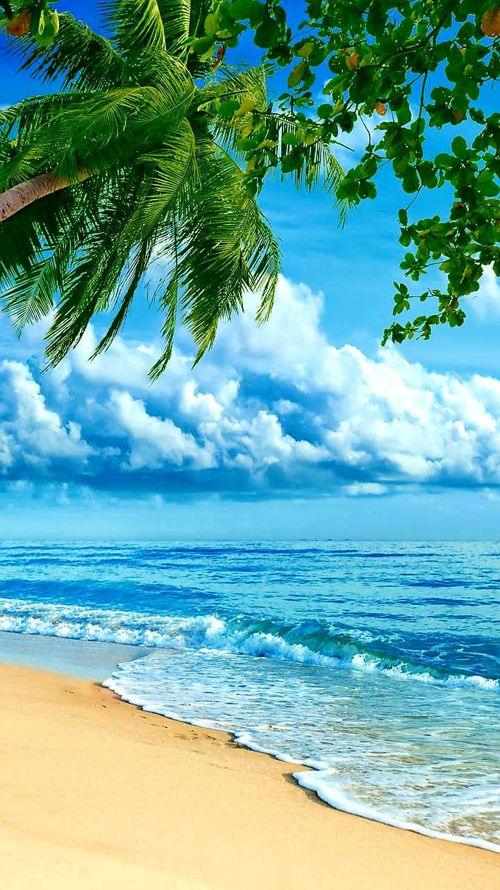 Aruba Tourism Authority - travel agency  | Photo 1 of 1 | Address: 400 Plaza Dr #101, Secaucus, NJ 07094, USA | Phone: (800) 862-7822