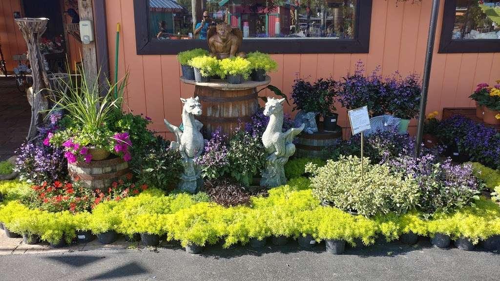 Flamingo Road Nursery - store  | Photo 10 of 10 | Address: 1655 S Flamingo Rd, Davie, FL 33325, USA | Phone: (954) 476-7878
