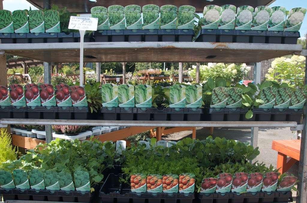 Greenacres - store  | Photo 8 of 10 | Address: Borough Green Road, Ightham, Sevenoaks TN15 9HS, UK | Phone: 01732 884726