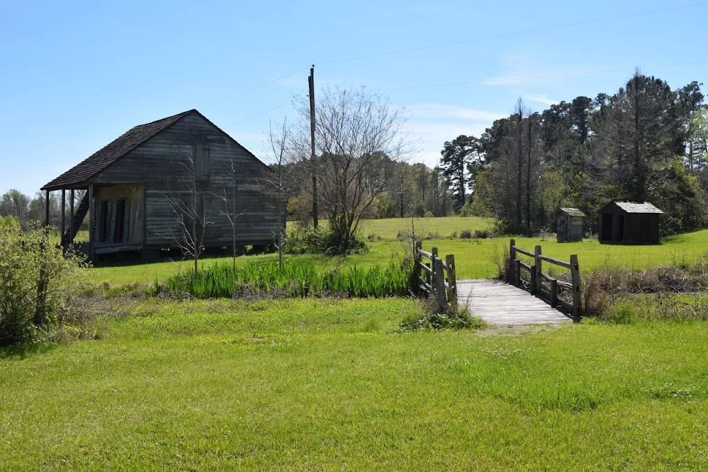 Burden Museum & Gardens - museum  | Photo 8 of 10 | Address: 4560 Essen Ln, Baton Rouge, LA 70809, USA | Phone: (225) 763-3990