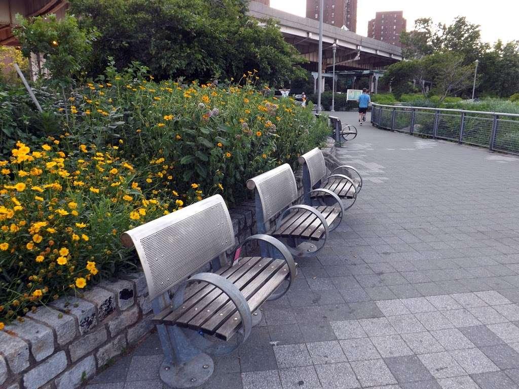 East River Promenade - park  | Photo 1 of 10 | Address: East River Promenade, New York, NY 10002, USA