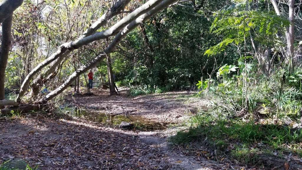 Frog Creek - park  | Photo 1 of 5 | Address: Palos Verdes Estates, CA 90274, USA