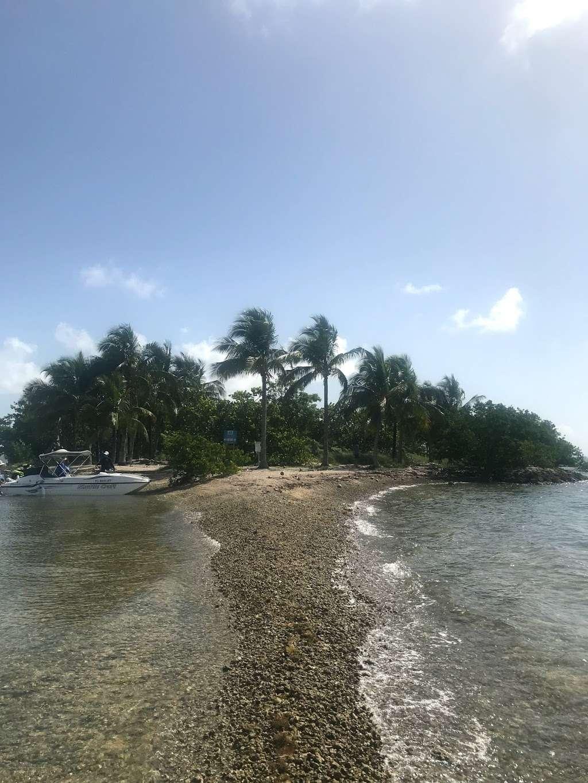 Edward K. Buckley Island - park  | Photo 4 of 10 | Address: Miami Beach, FL 33141, USA