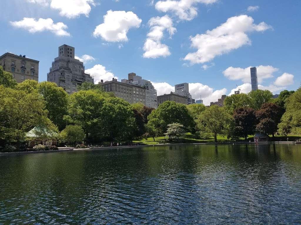 The Lake Viewing Area - park    Photo 4 of 10   Address: New York, NY 10024, USA
