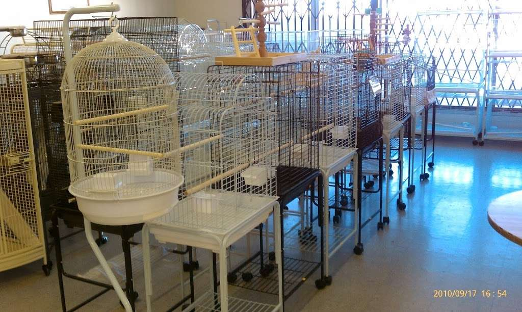 Fords Feathers - pet store  | Photo 4 of 10 | Address: 1532 W Carson St, Torrance, CA 90501, USA | Phone: (310) 212-5903