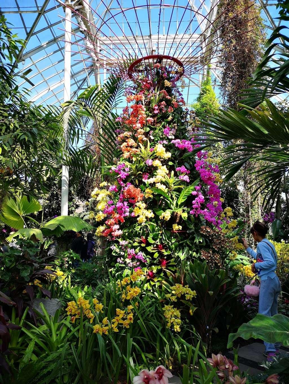 Bronx Botanical Garden - museum  | Photo 4 of 10 | Address: The Bronx, NY 10458, USA | Phone: (718) 817-8700
