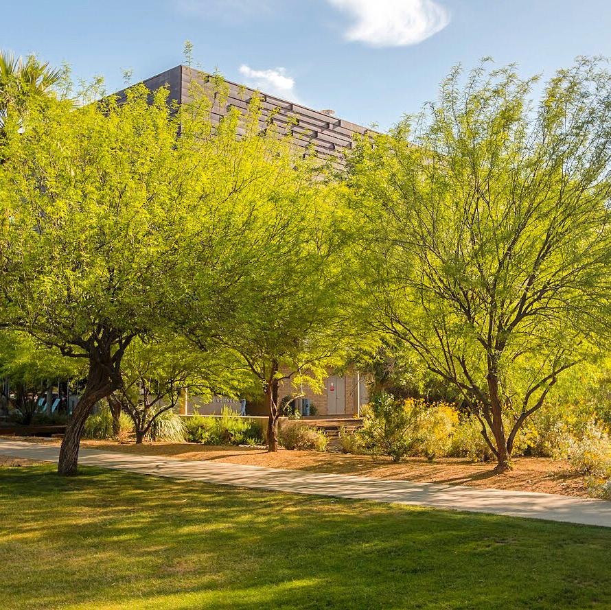 Glendale Community College - university    Photo 4 of 10   Address: 6000 W Olive Ave, Glendale, AZ 85302, USA   Phone: (623) 845-3000