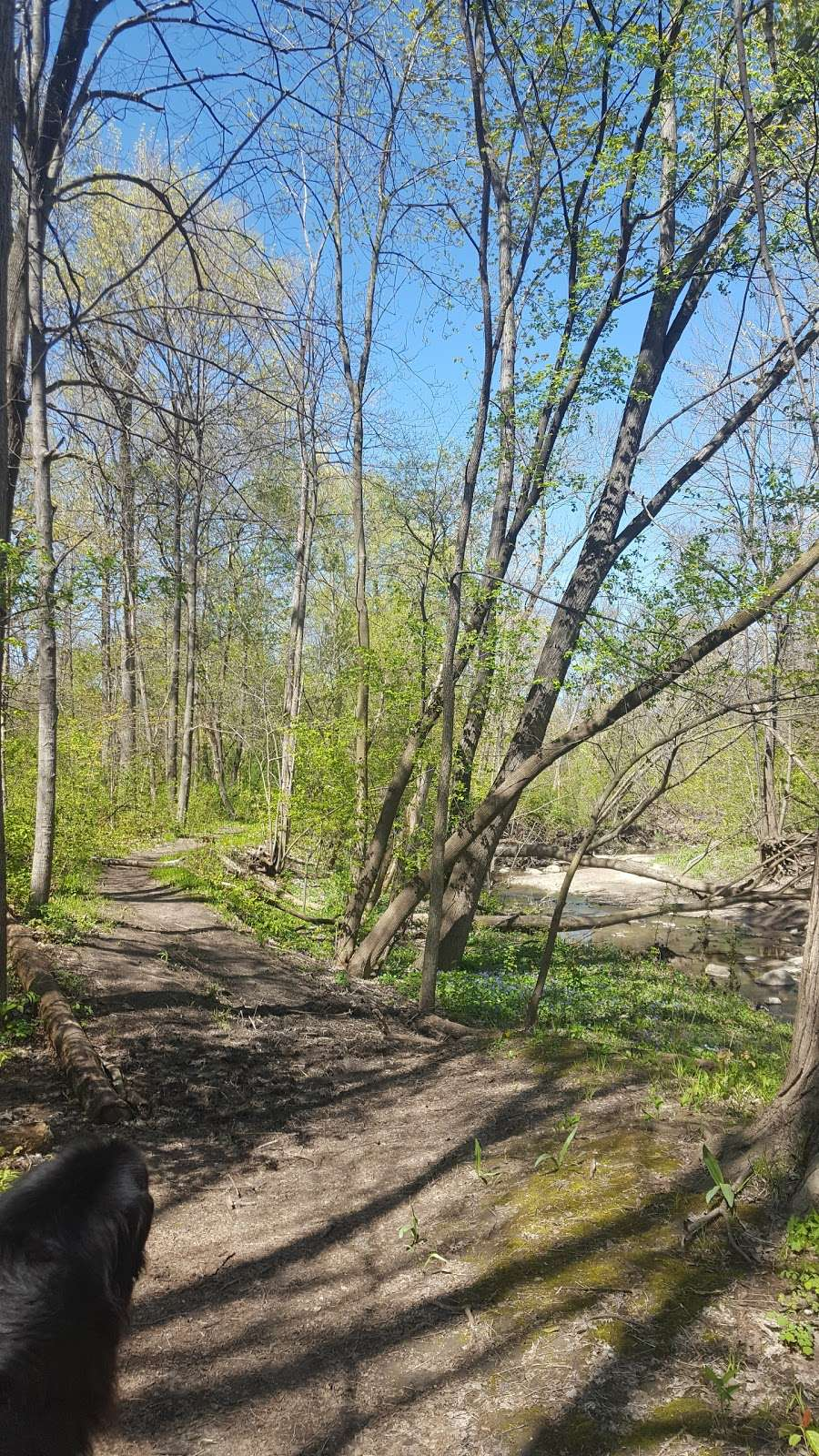 Kinnickinnic River Parkway - park  | Photo 5 of 10 | Address: W Rita Dr, Milwaukee, WI 53219, USA | Phone: (414) 643-0120
