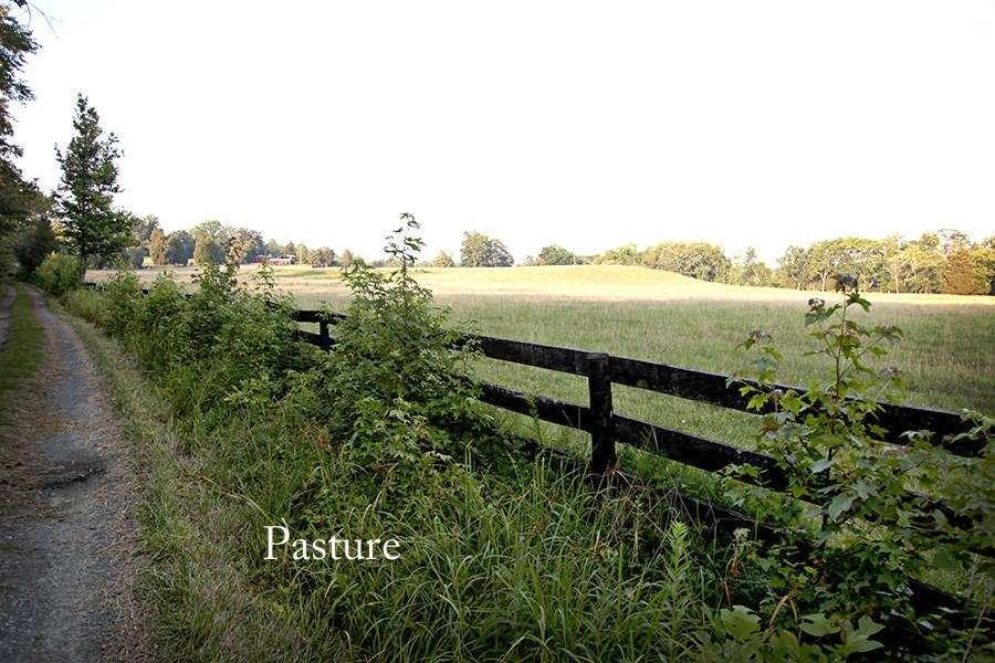 Oakenwold Farm~ Development Land For Sale - real estate agency  | Photo 6 of 8 | Address: 68 Oakenwold Ln, Fredericksburg, VA 22406, USA | Phone: (843) 670-7956