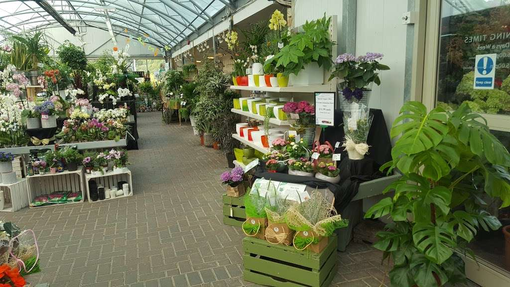 Knights Garden Centre - Betchworth Plant Centre - florist  | Photo 1 of 6 | Address: Station Rd, Betchworth RH3 7DF, UK | Phone: 01737 842099