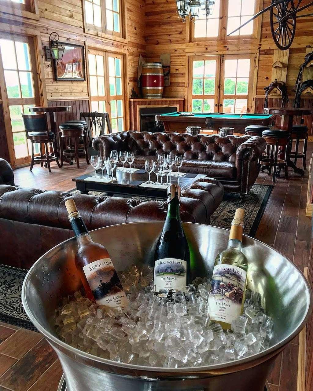 Muchas Uvas Winery - travel agency    Photo 8 of 10   Address: 116 High Meadow Manor LN, Flint Hill, VA 22627, USA   Phone: (202) 258-7095
