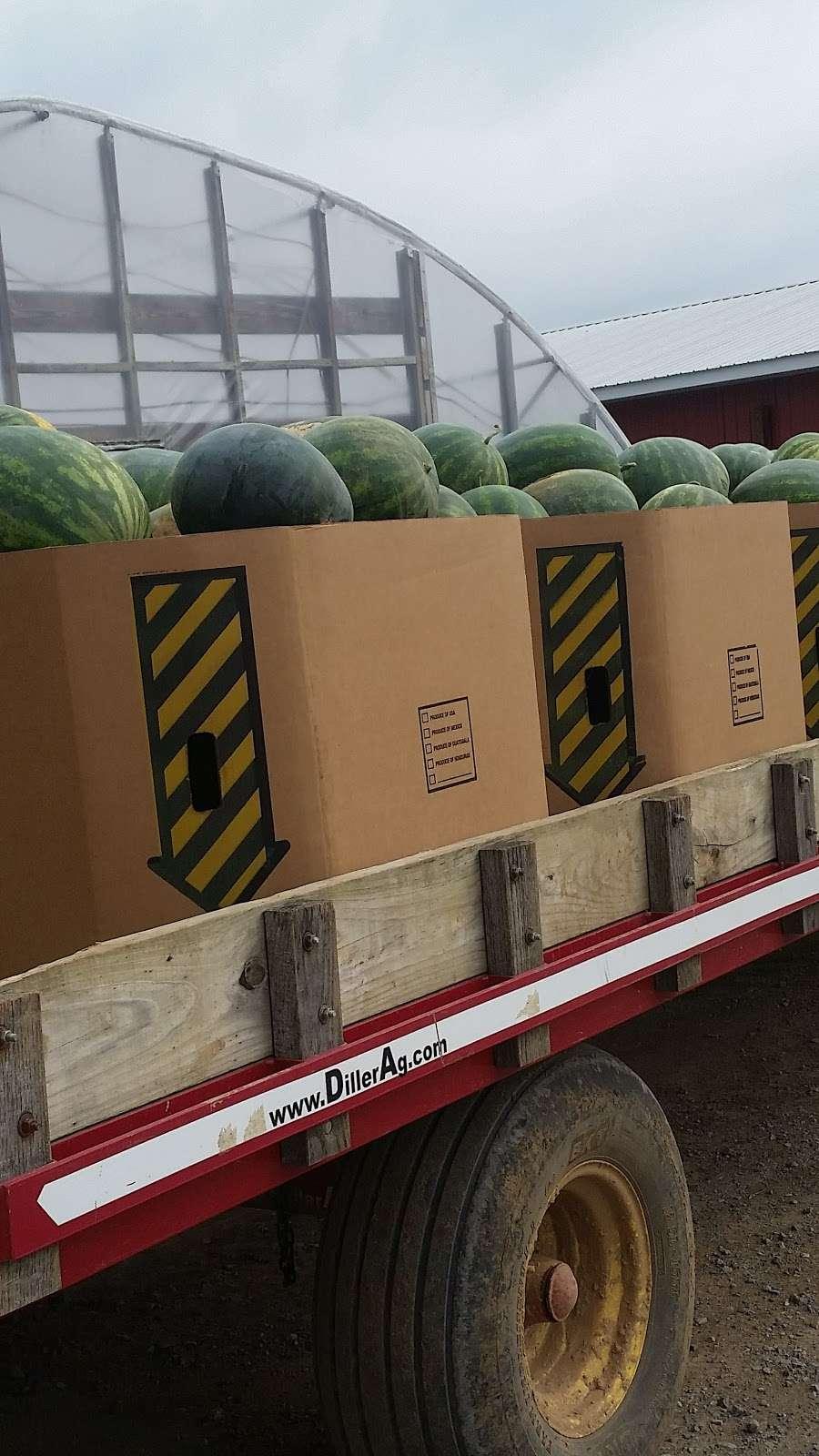 Housers Produce Farm Inc - store  | Photo 1 of 4 | Address: 16517 Shaffer Rd, Sharpsburg, MD 21782, USA | Phone: (301) 223-6399