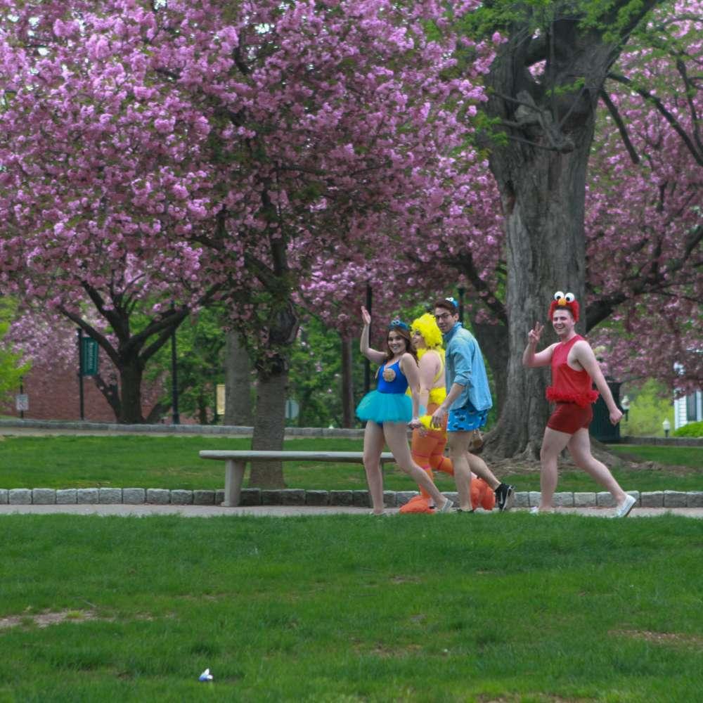 Wagner College - university  | Photo 10 of 10 | Address: 1 Campus Rd, Staten Island, NY 10301, USA | Phone: (718) 390-3100