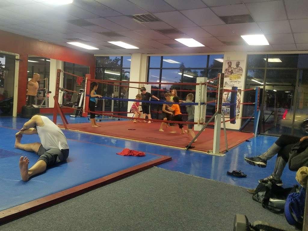 American Pankration Fighting MMA - gym  | Photo 5 of 10 | Address: 1310 E Broadway Rd #103, Tempe, AZ 85282, USA | Phone: (602) 770-5424