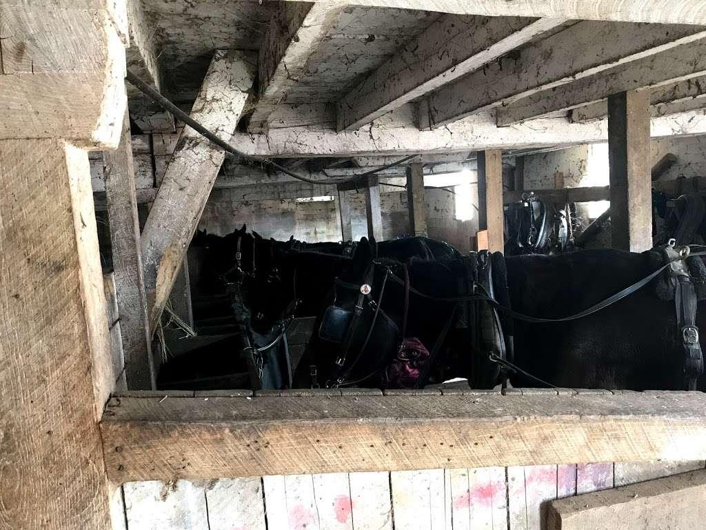 Amish meat John Wye - store  | Photo 1 of 10 | Address: 37404 Westham Ln, Mechanicsville, MD 20659, USA | Phone: (240) 707-1269