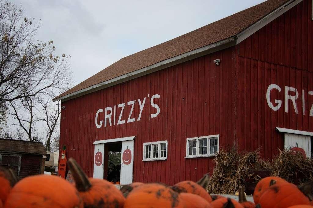 Grizzy's Pumpkins - store    Photo 8 of 10   Address: Marengo, IL 60152, USA