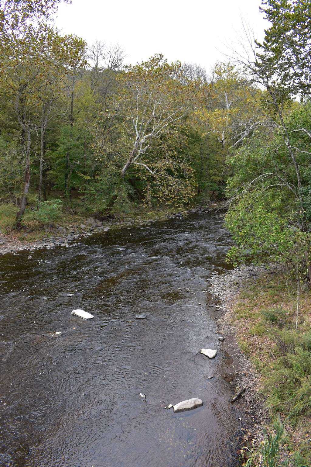 The Tohickon Creek At the Point Pleasant Bridge - park  | Photo 9 of 10 | Address: River Rd, Pipersville, PA 18947, USA