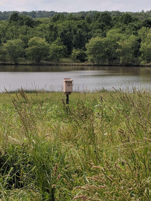 Pine Run Reservoir Parking - park  | Photo 5 of 6 | Address: 598-514 Iron Hill Rd, Doylestown, PA 18901, USA