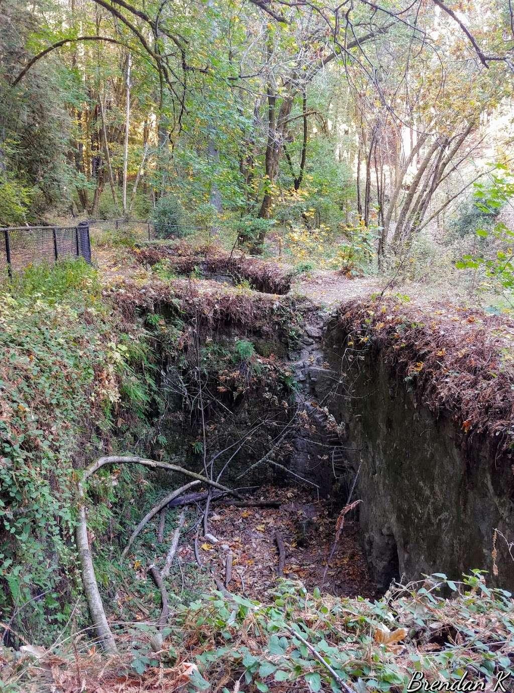 Old Lime Kiln Ruins - park  | Photo 7 of 10 | Address: Fall Creek Trail, Felton, CA 95018, USA
