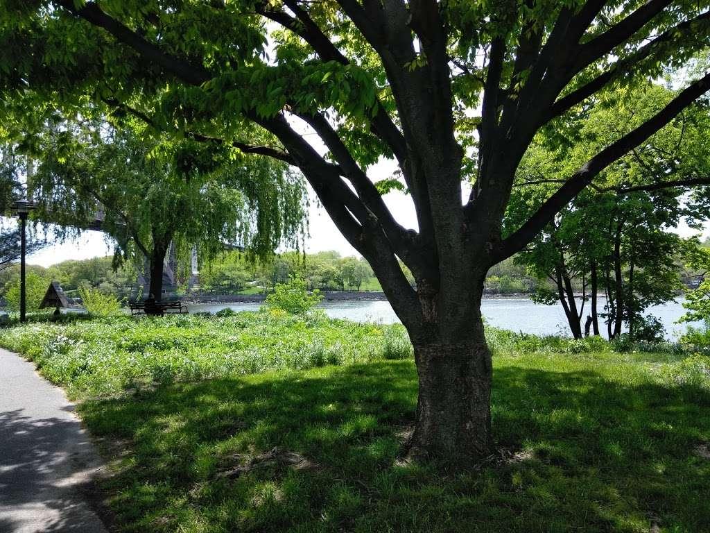 Randalls Island, Kantor Fields - park  | Photo 2 of 6 | Address: Hell Gate Cir, New York, NY 10035, USA