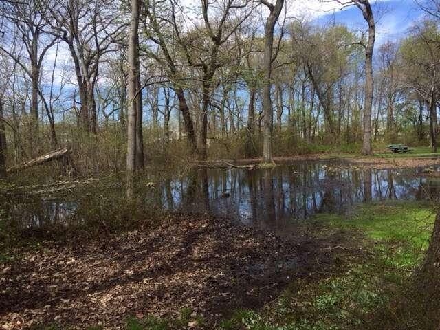 Schmidts Woods Park - park    Photo 8 of 10   Address: Millridge Rd, Secaucus, NJ 07094, USA   Phone: (201) 330-2078