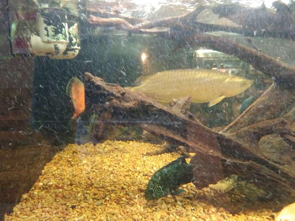 Rizzos Wildlife World - zoo  | Photo 9 of 10 | Address: 1 Gold Mine Rd, Flanders, NJ 07836, USA | Phone: (973) 586-0444