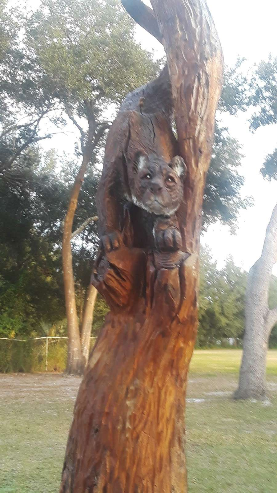 Cadwell Park - park  | Photo 1 of 10 | Address: 1 Cassady St, Umatilla, FL 32784, USA