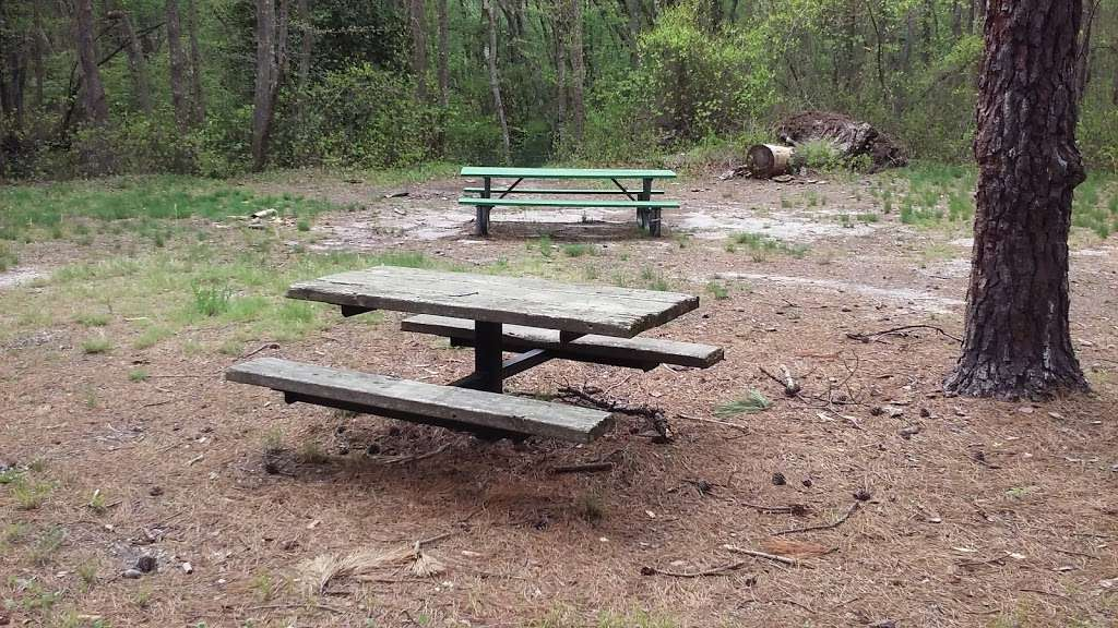 Riverwood Park Recreation - park    Photo 6 of 10   Address: Riverwood Dr, Toms River, NJ 08753, USA   Phone: (732) 341-1000