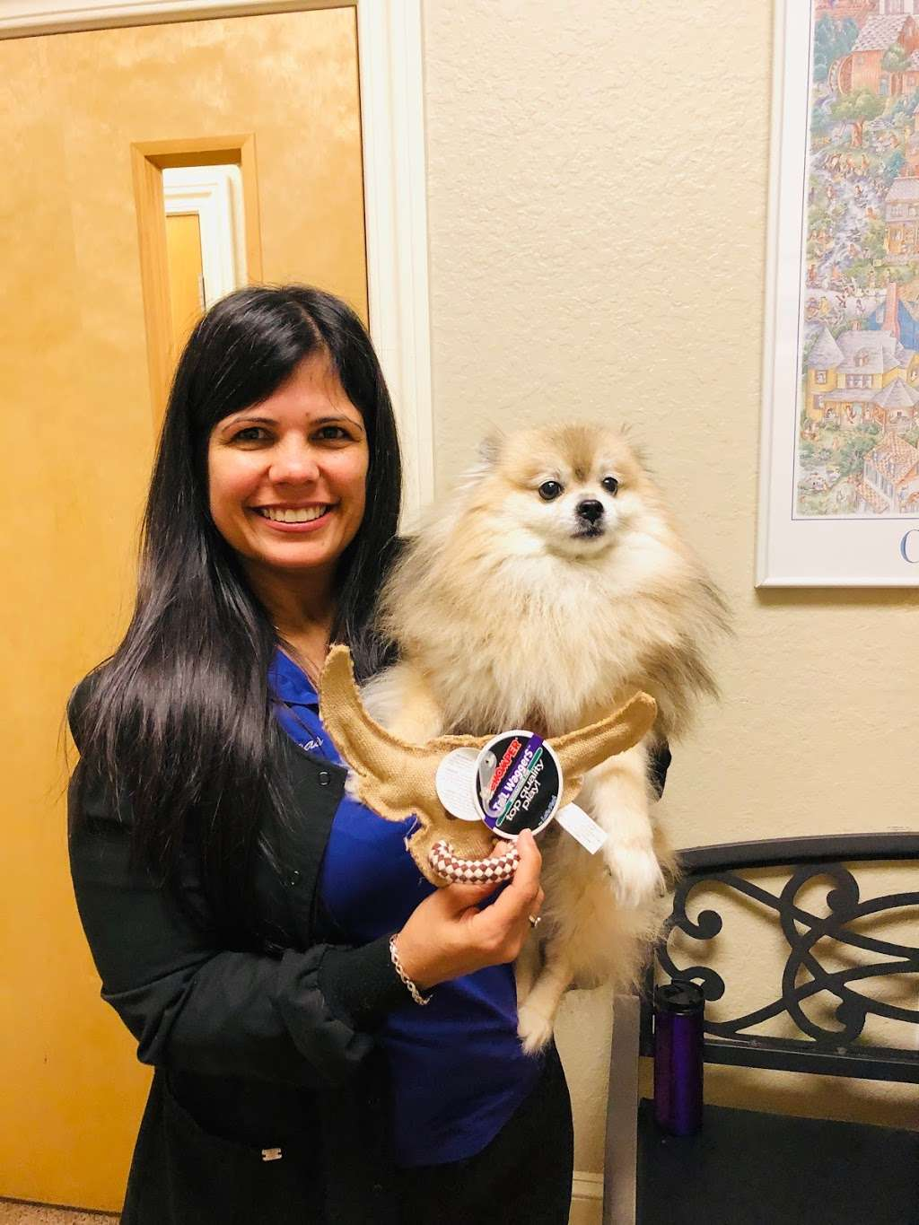 Orchid Springs Animal Hospital - veterinary care  | Photo 7 of 10 | Address: 615 Overlook Dr, Winter Haven, FL 33884, USA | Phone: (863) 777-5600