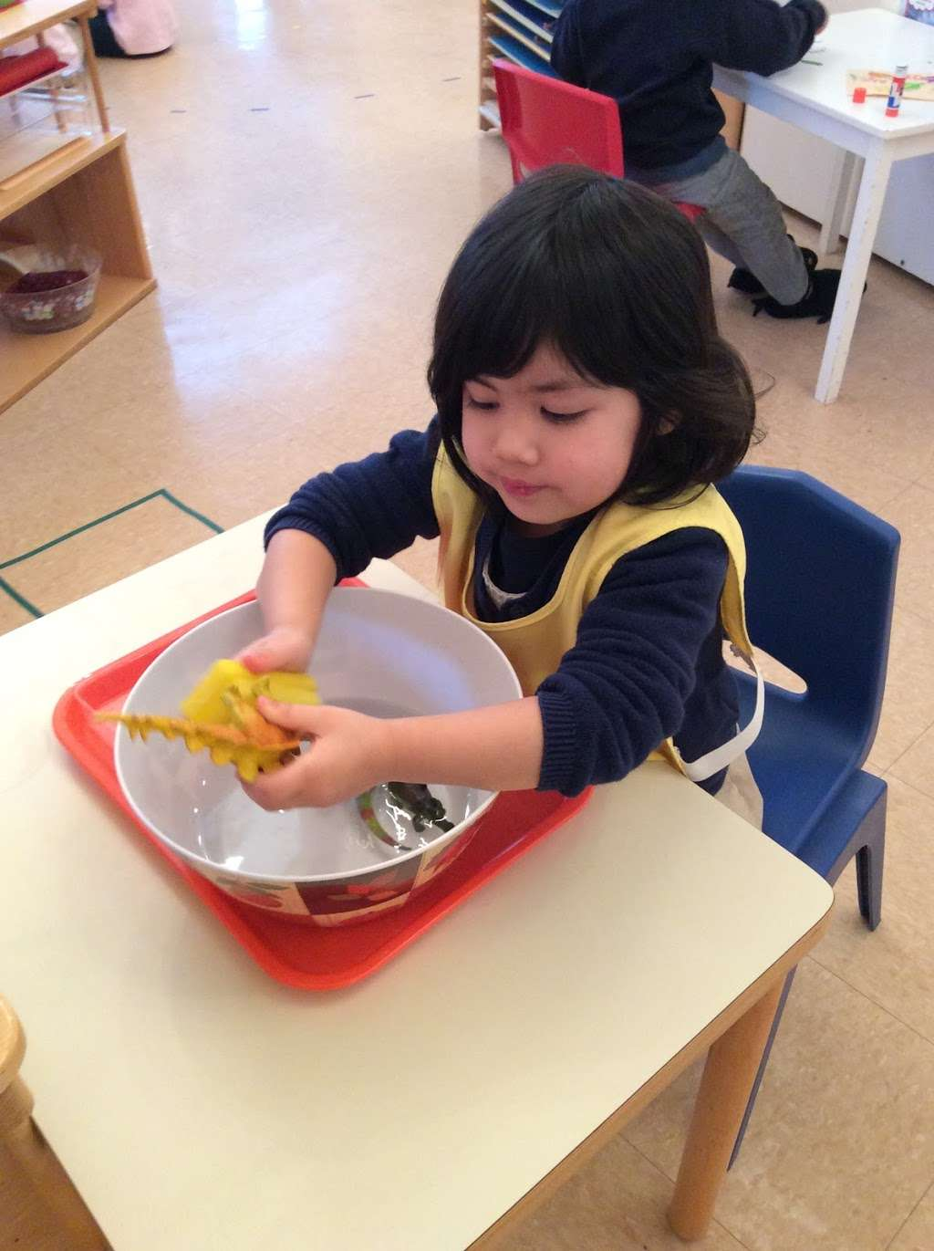 Village Montessori School - school  | Photo 8 of 10 | Address: 33874 Snickersville Turnpike, Bluemont, VA 20135, USA | Phone: (540) 454-7514