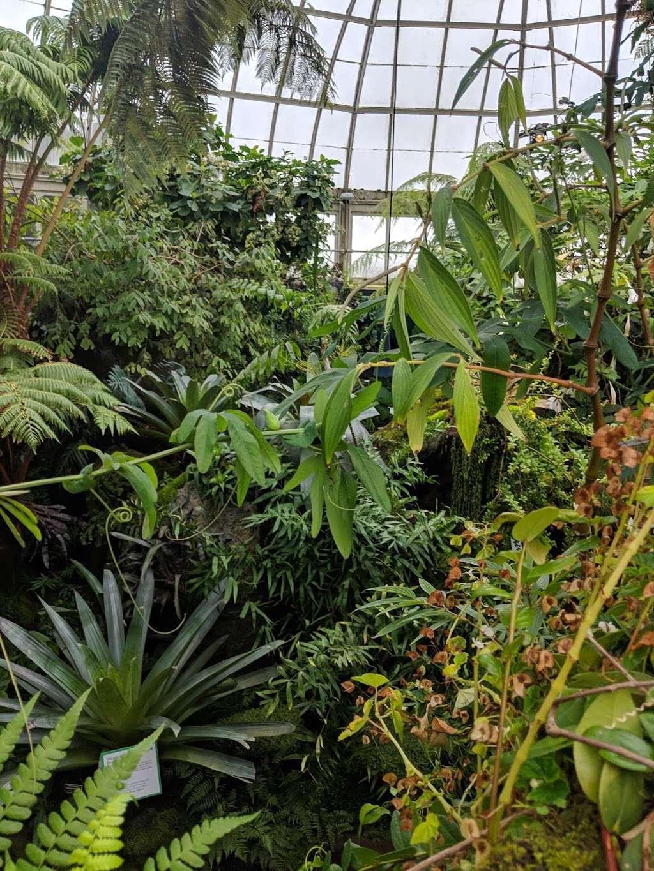 Bronx Botanical Garden - museum  | Photo 3 of 10 | Address: The Bronx, NY 10458, USA | Phone: (718) 817-8700