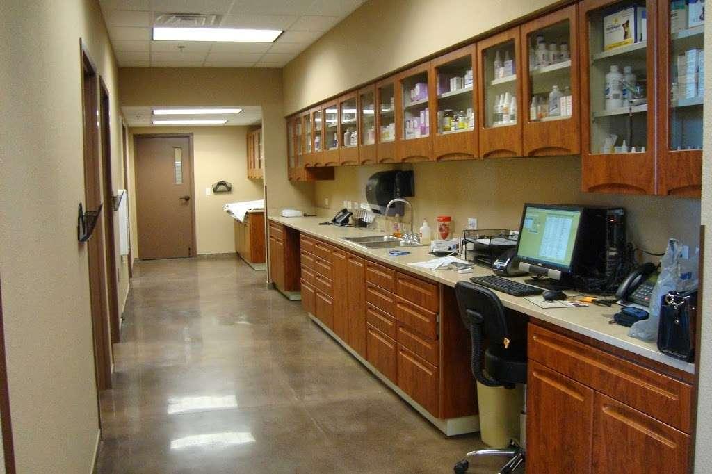DeZavala-Shavano Veterinary Clinic - veterinary care  | Photo 10 of 10 | Address: 4408 Lockhill Selma Rd, San Antonio, TX 78249, USA | Phone: (210) 699-3939